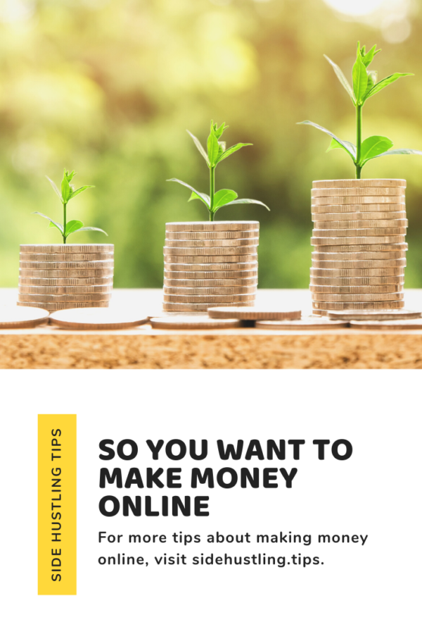 So you want to make money online